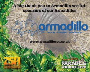 Armadillo Sponsors ZSH Armadillos